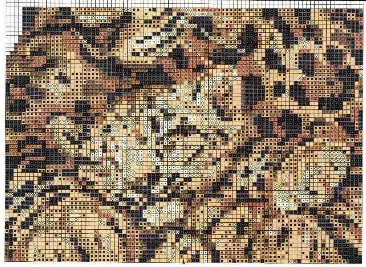 Вышивка крестом леопарды схема 30