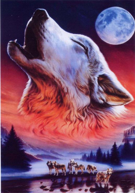 Песня волк и луна скачать